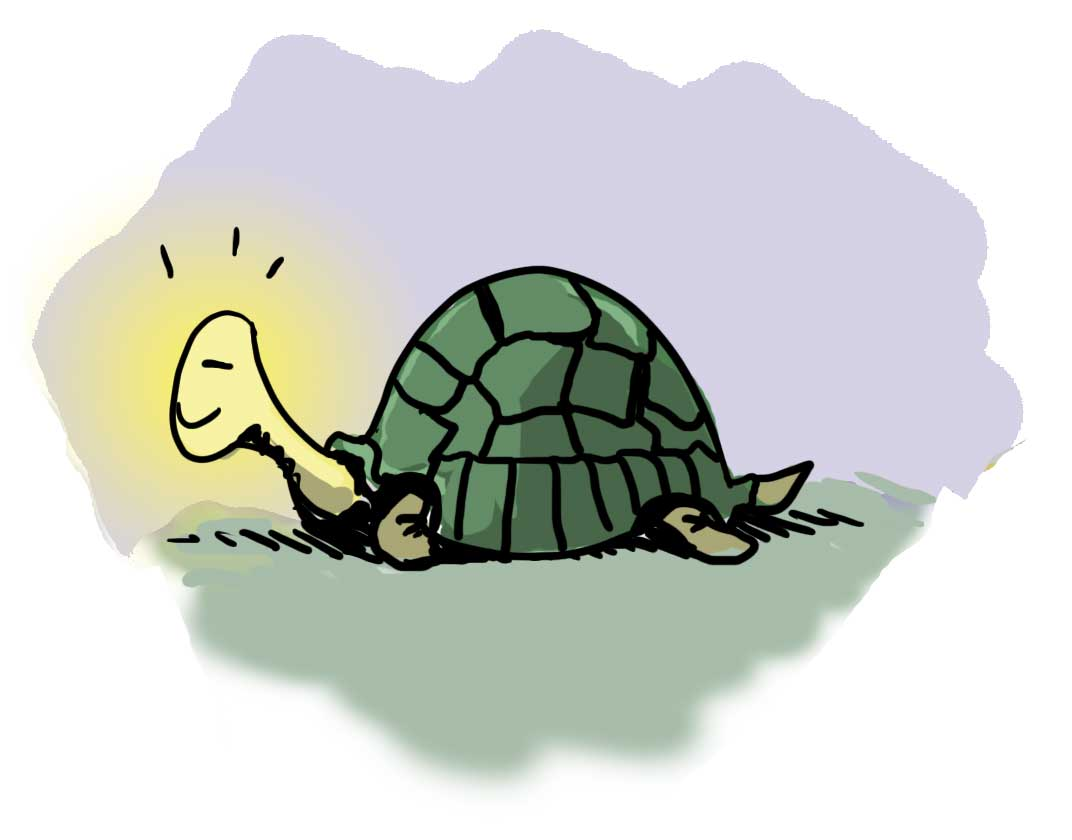 Exercise Your Power to Withdraw with Natalie and the Tortoise