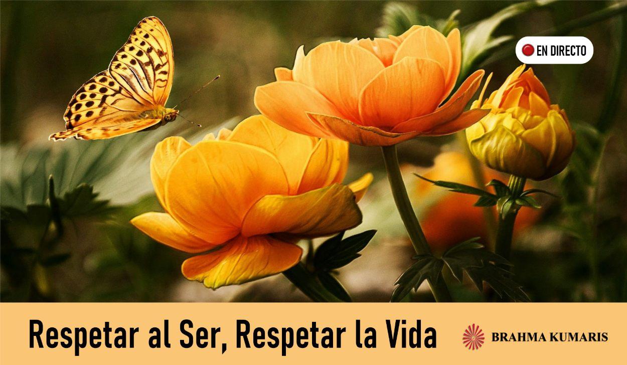 26 Abril 2020  Meditación Guiada:  Respetar al ser, respetar la vida