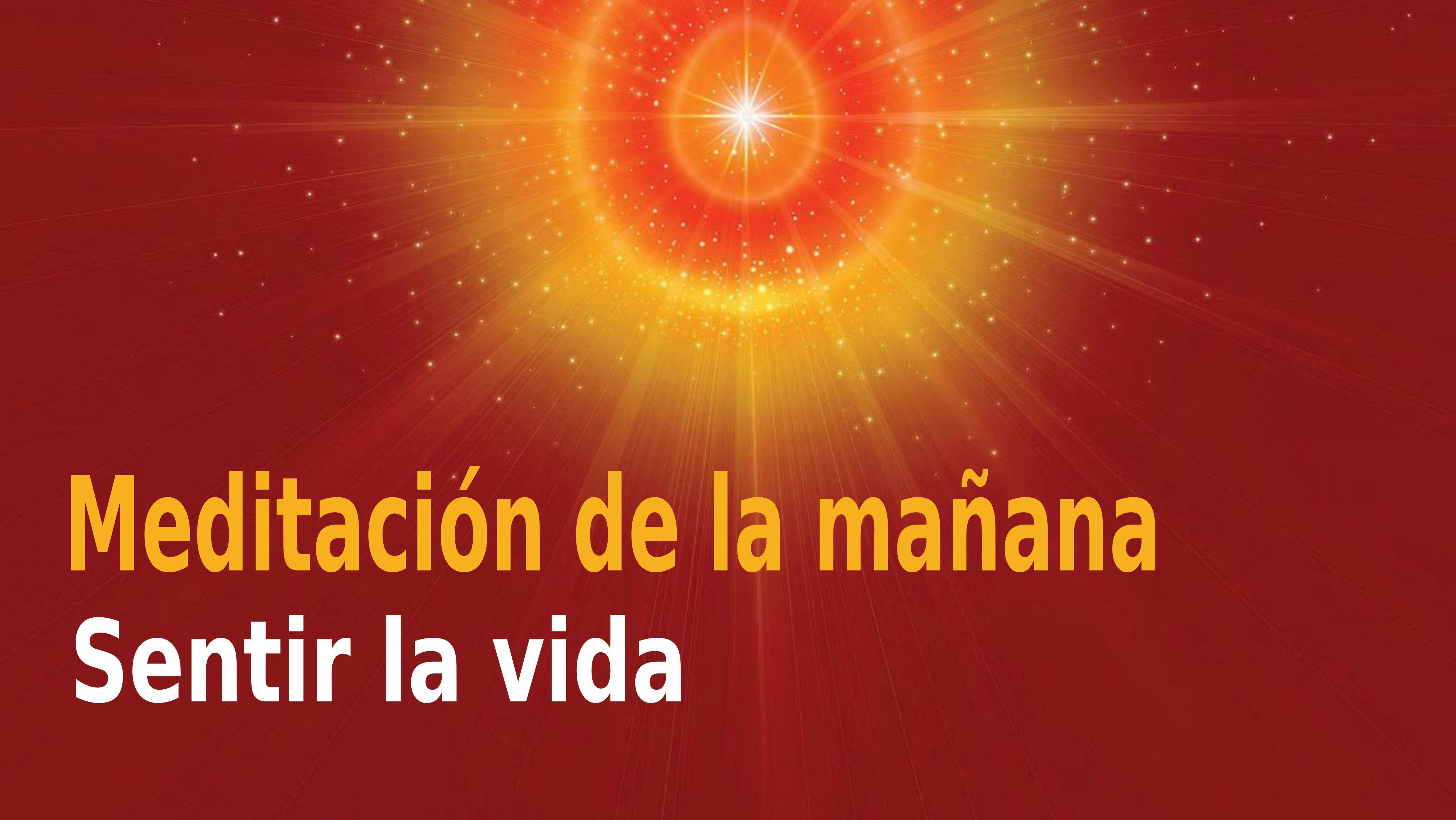 Meditación de la mañana Raja Yoga: Sentir la vida  (28 Octubre 2020)
