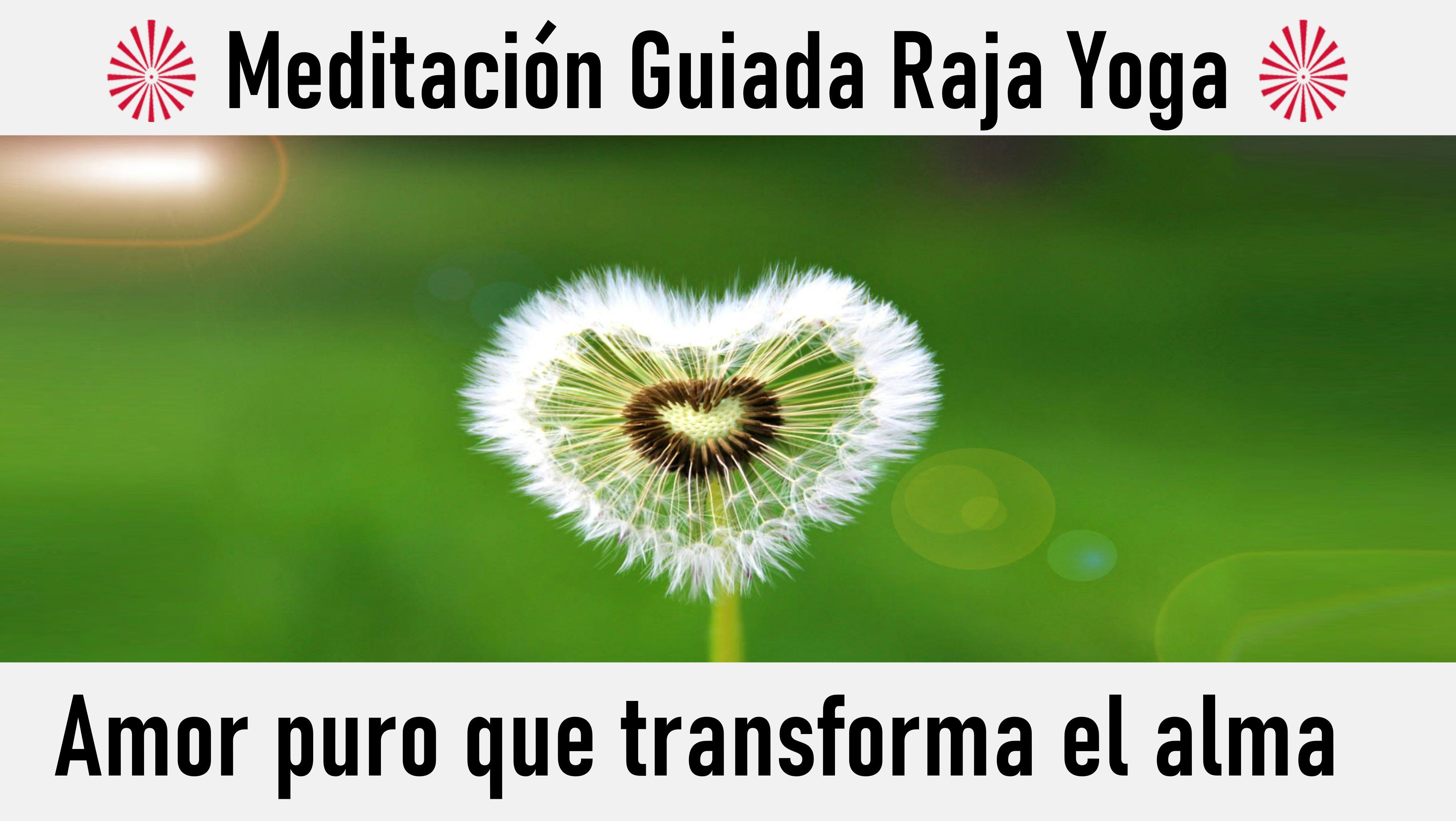14 Junio 2020 Meditación Guiada: Amor puro que transforma el alma