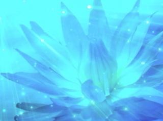 Meditar El Camino del Recuerdo Vol. 7 La Verdad Eterna