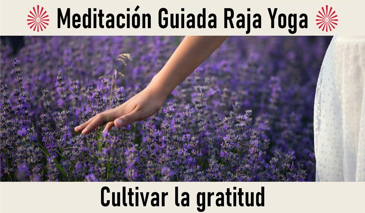 3 Mayo 2020  Meditación Guiada:  Cultivar la gratitud