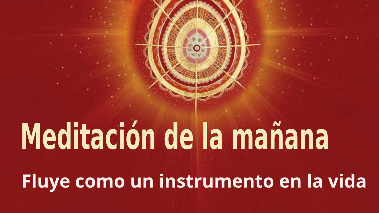 Meditación de la mañana: Fluye como un instrumento en la vida, por Enrique Simó (27 Septiembre 2021)