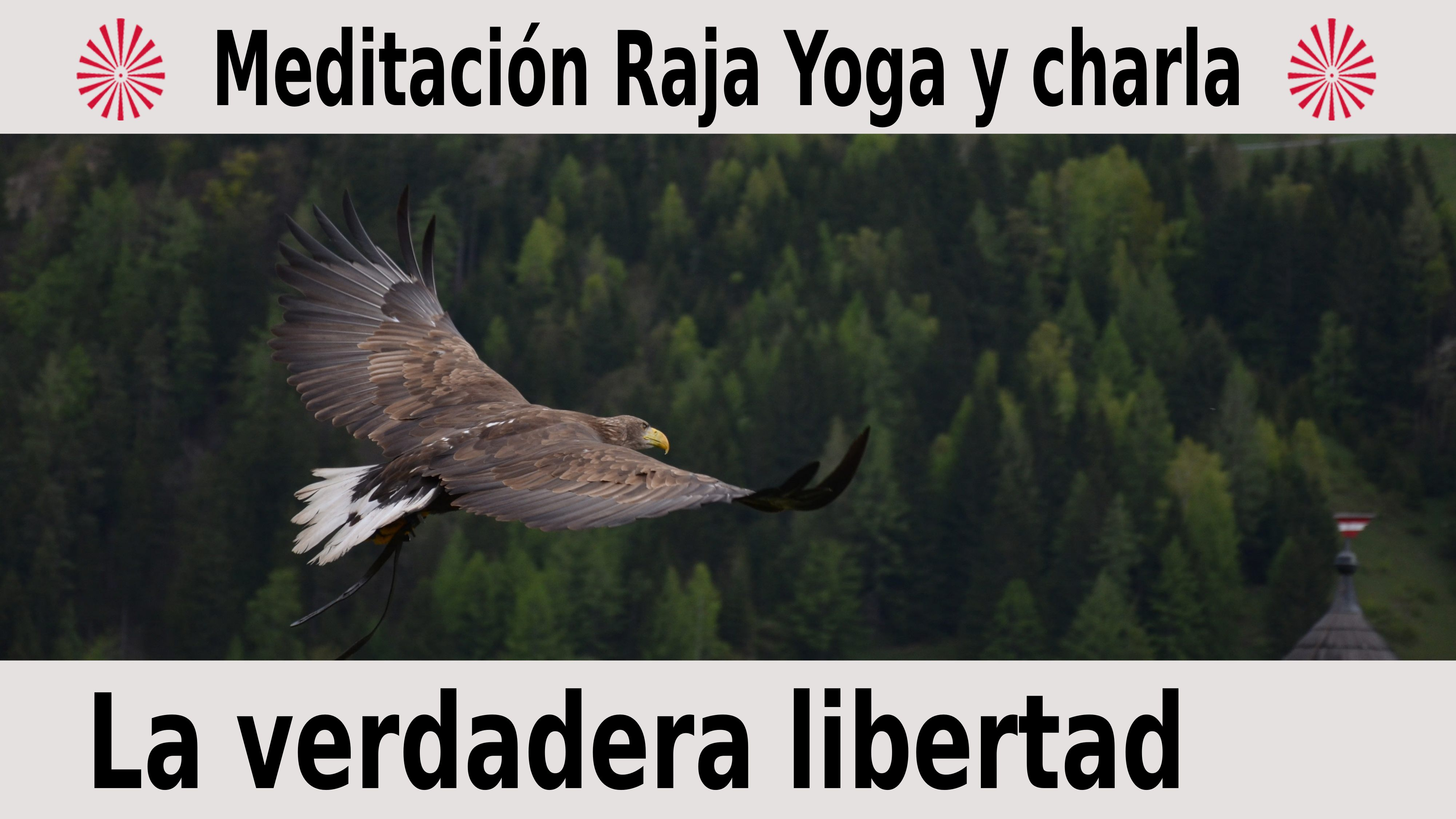 10 Diciembre 2020  Meditación Guiada:  La verdadera libertad