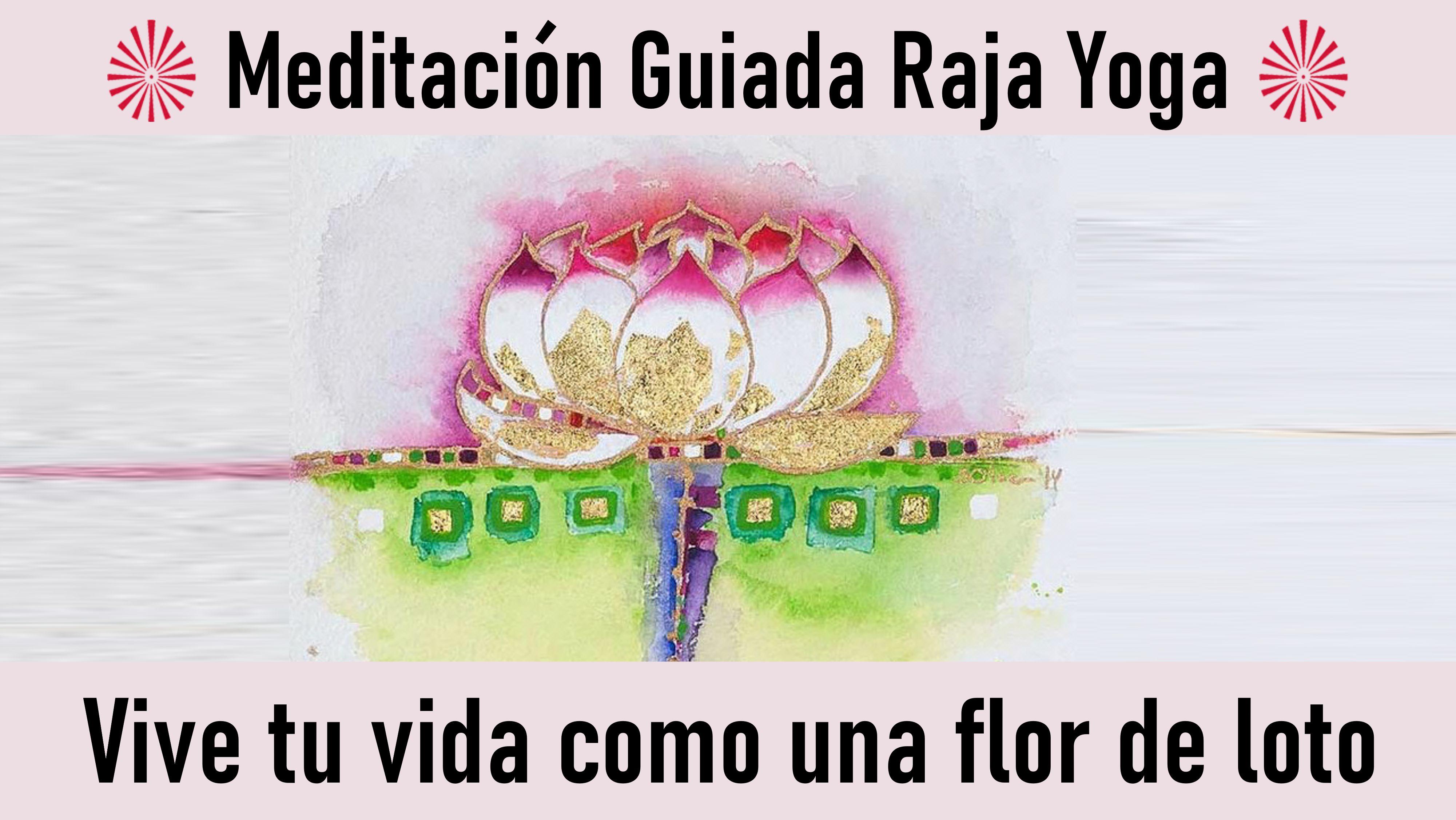 Meditación Raja Yoga: Vive tu vida como una flor de loto (29 Octubre 2020) On-line desde Madrid