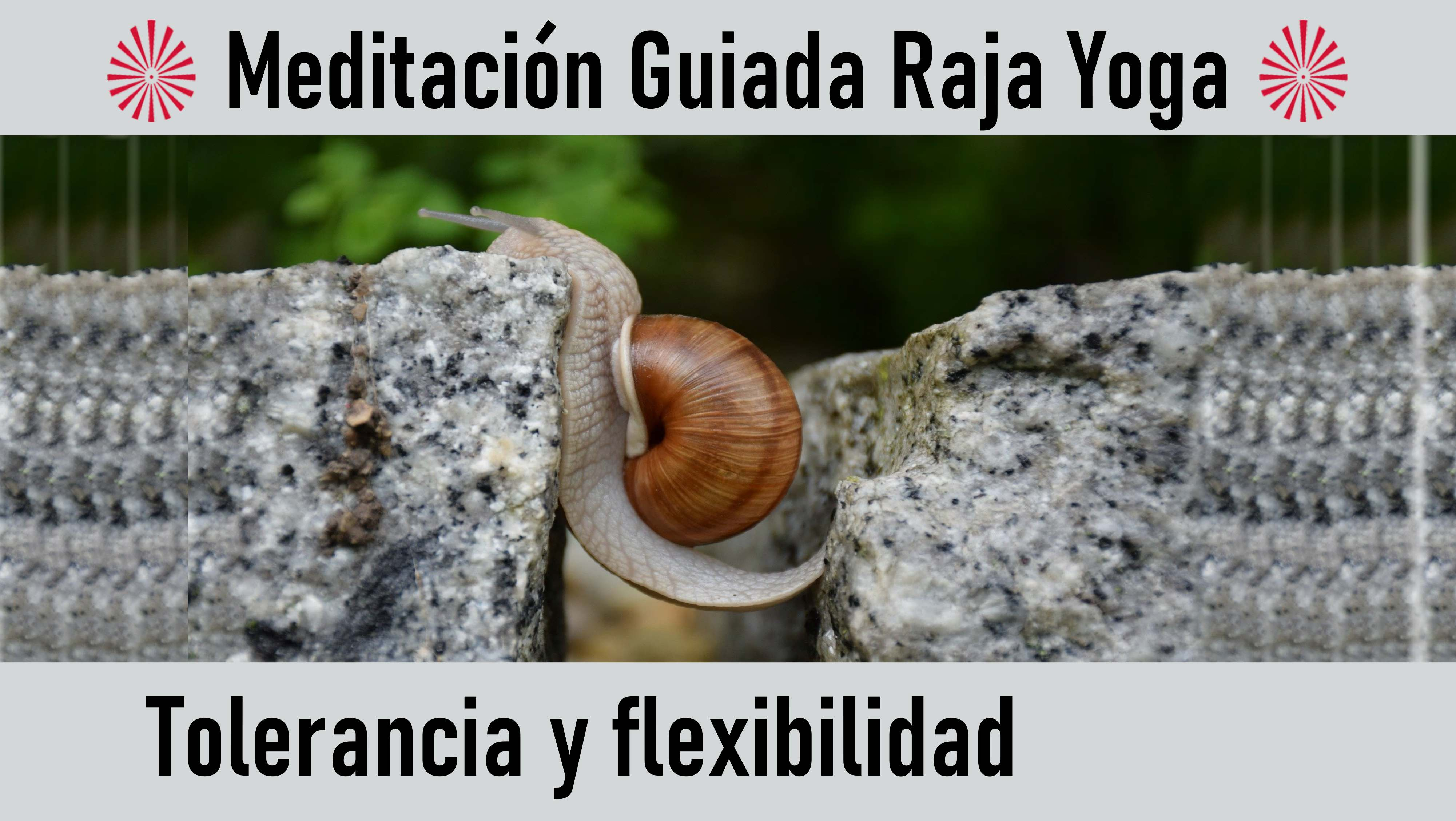Meditación Raja Yoga: Tolerancia y flexibilidad (18 Agosto 2020) On-line desde Madrid