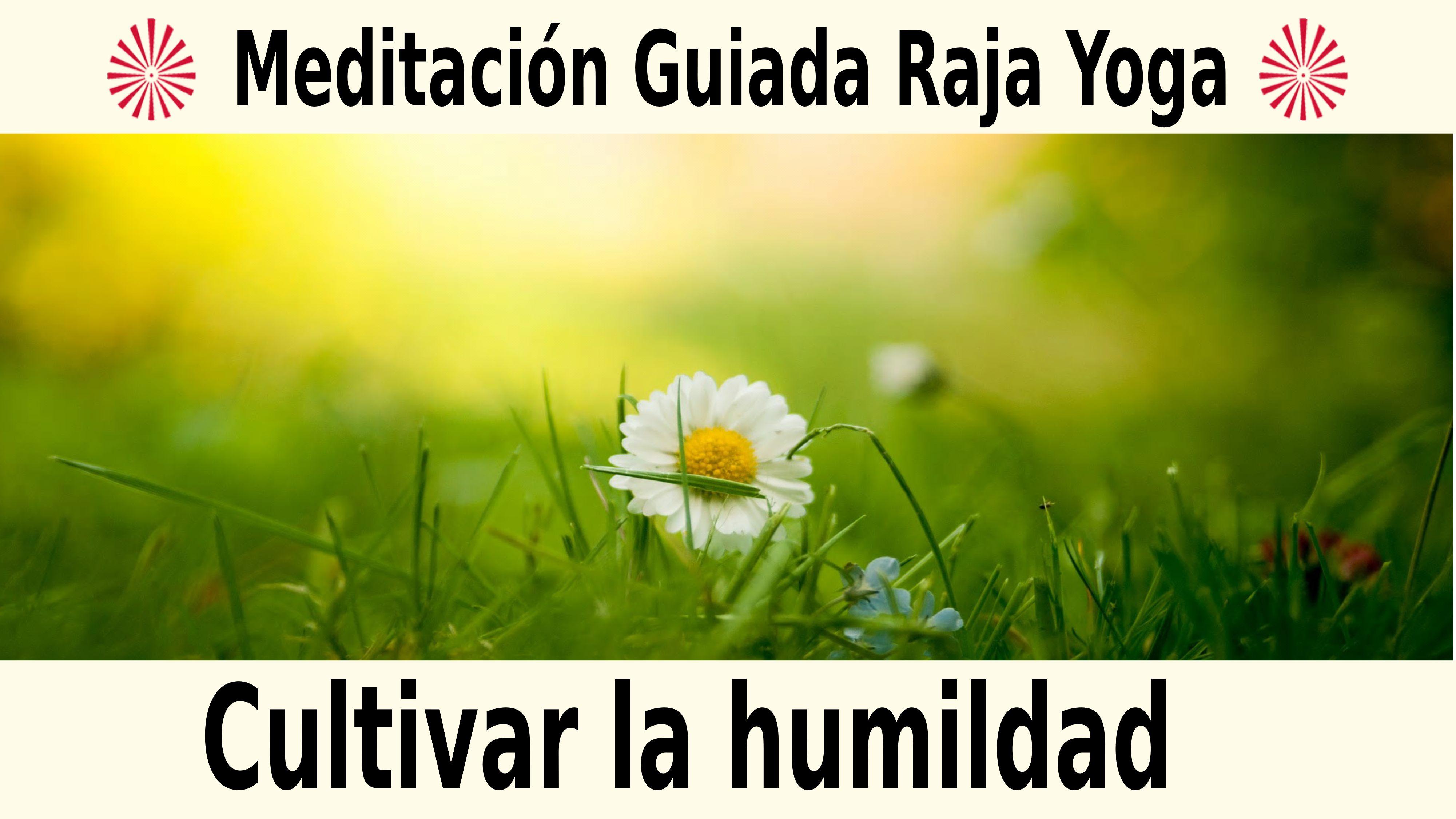 Meditación Raja Yoga: Cultivar la humildad (6 Noviembre 2020) On-line desde Madrid