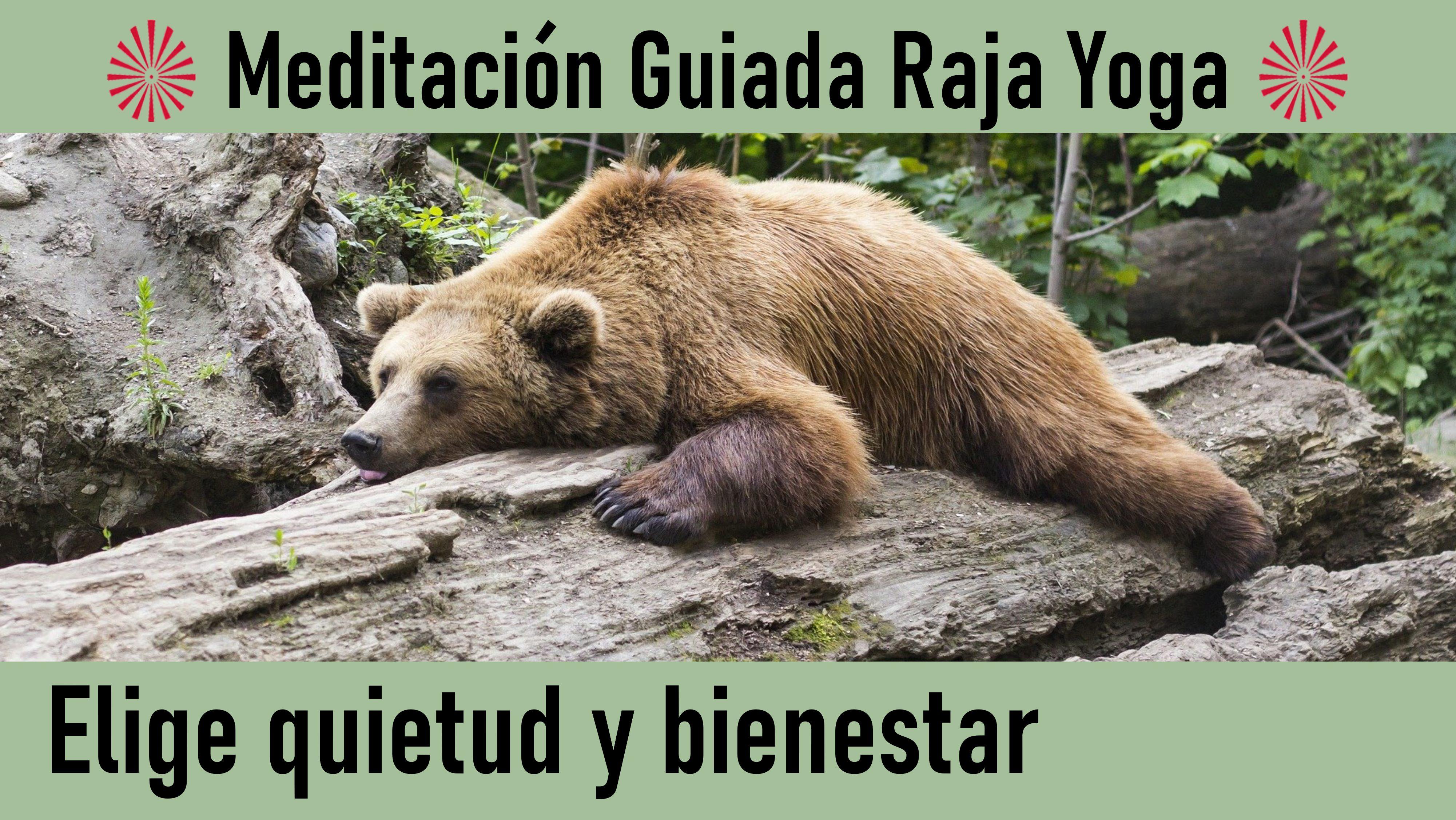 Meditación Raja Yoga: Elige quietud y bienestar (12 Junio 2020) On-line desde Barcelona
