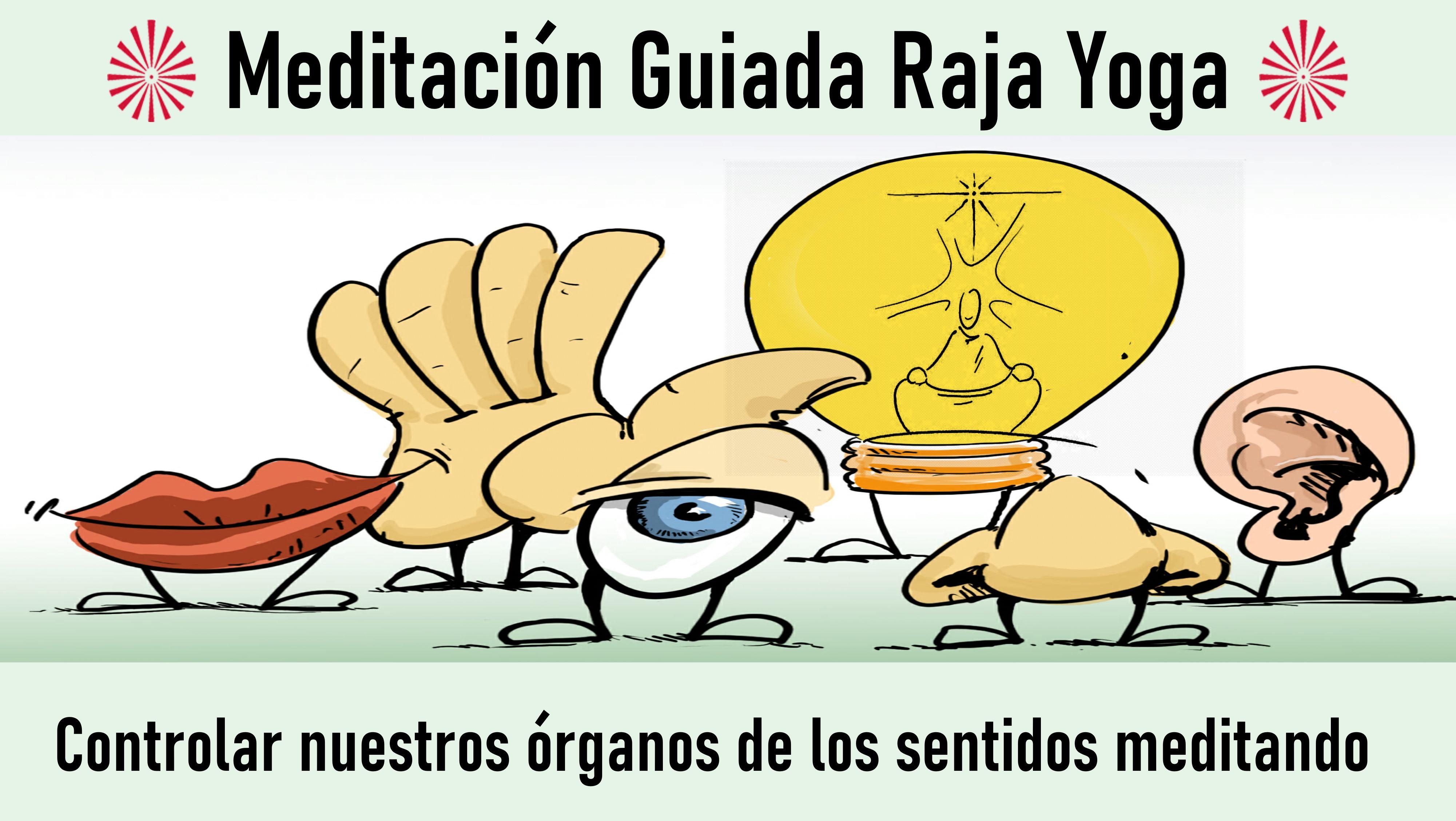 Meditación Raja Yoga: Controlar nuestros órganos de los sentidos meditando (28 Octubre 2020) On-line desde Sevilla