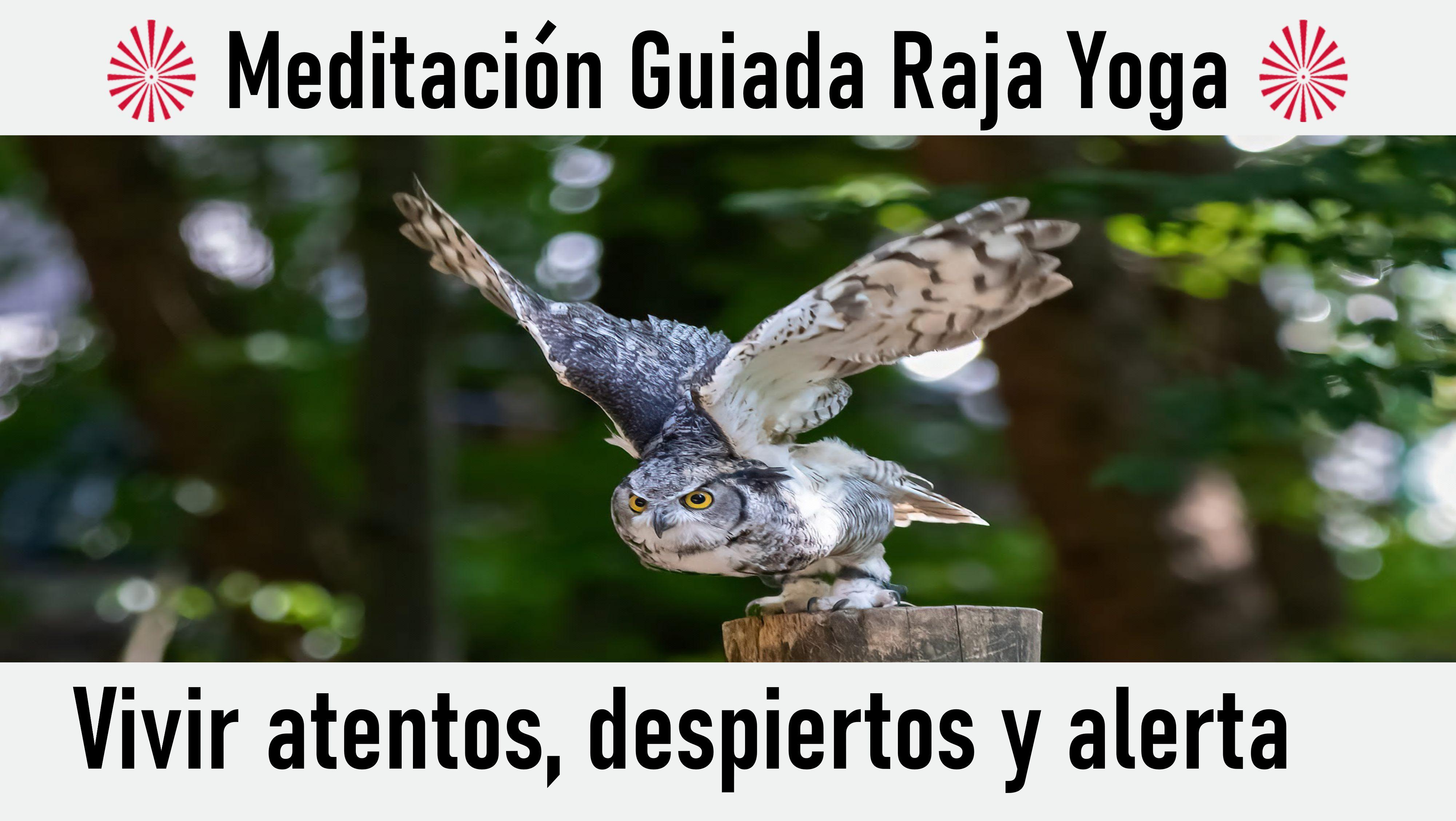Meditación Raja Yoga: Vivir atentos, despiertos y alerta (31 Octubre 2020) On-line desde